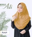Hijab Bergo Asti 4