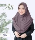 Hijab Bergo Asti 6